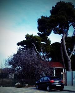 Winter in Vilanova i la Geltrú