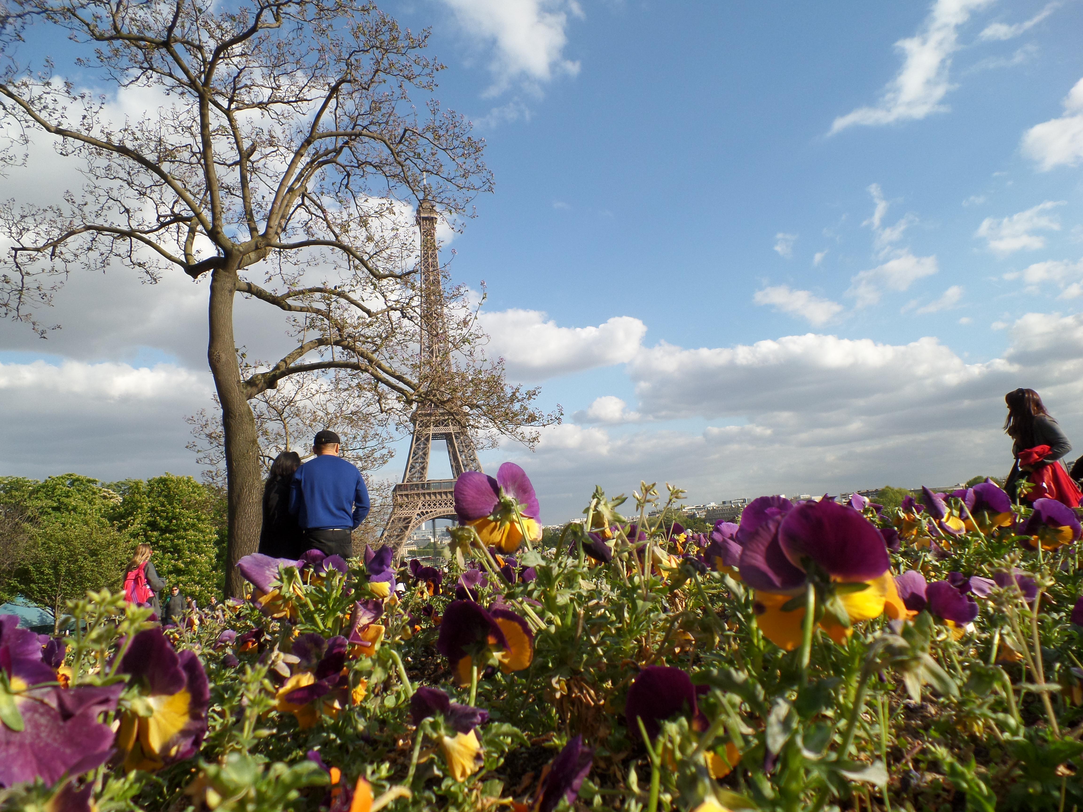 Tour Eiffel (París)