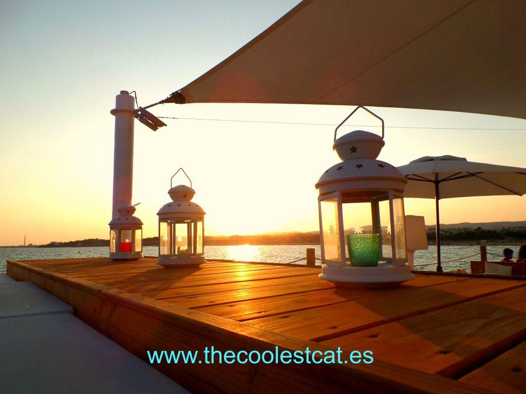 2014-07-26 La_daurada_ beach_club_Vilanova_Thecoolestcat