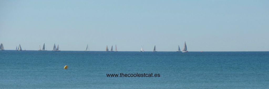 La_Daurada_Beach_Club_Vilanova
