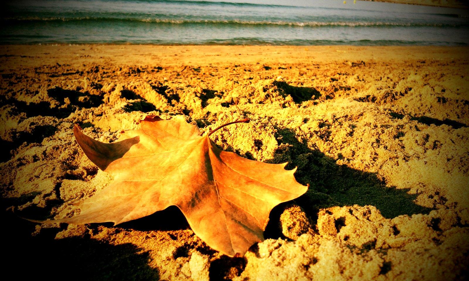 Autumn in Vilanova i la Geltrú